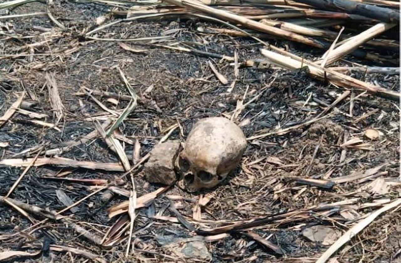 Campesinos hallan cráneo humano en cañales de Chocamán