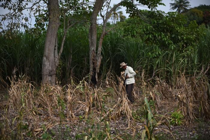 Se perderán recursos para el campo por subejercicio en el gobierno estatal
