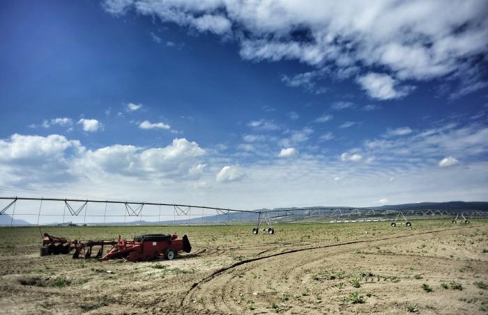 Industria redujo competitividad de los campesinos en el mercado