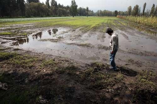 Caerán en pobreza 800 mil campesinos por ajuste al gasto