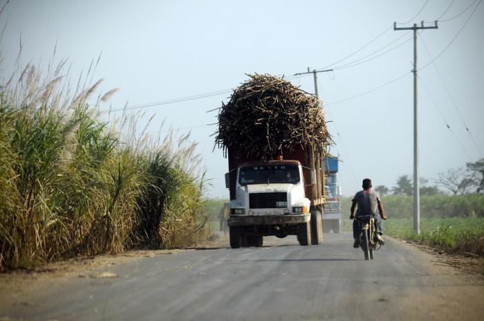Deben liquidación de la zafra a más de 60 mil cañeros en Veracruz