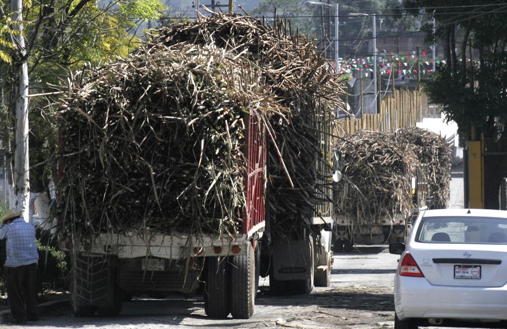 Cañeros de El Carmen, acusan fraude millonario en cada zafra