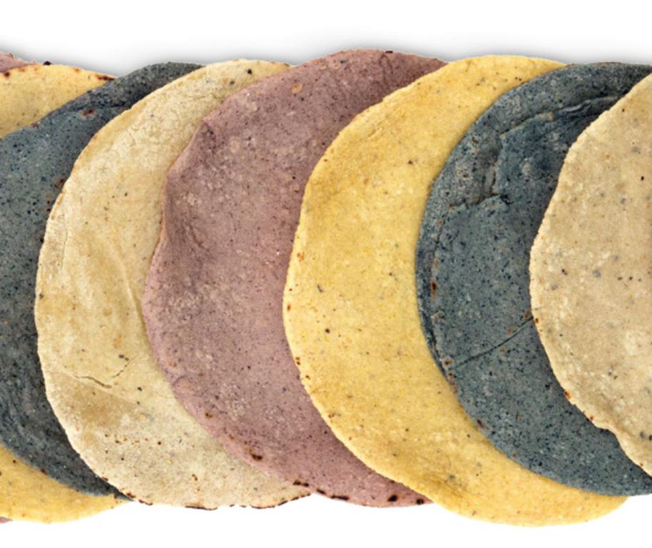 Más del 90% de tortillas en México están contaminadas: especialista