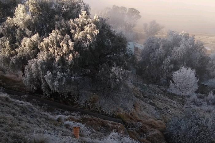 Heló en 5 municipios de Veracruz; esperan surada y nuevo frente frío