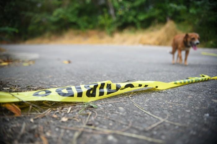 Perro mata a niña de tres años en Veracruz