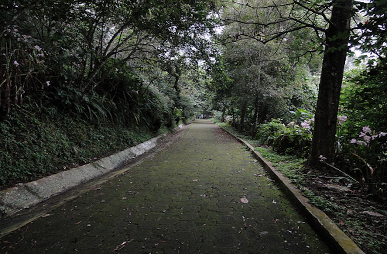 Hallan osamenta en el Cerro del Macuiltépetl