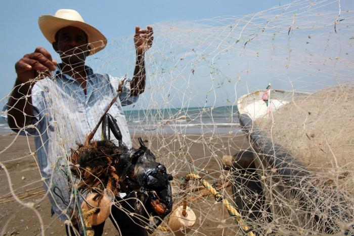 Semarnat se lava las manos de la contaminación con chapopote en playas de Alvarado