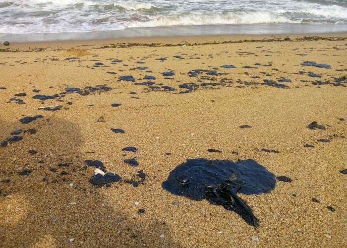Chapopote cubre 5 kilómetros de playa en Coatzacoalcos