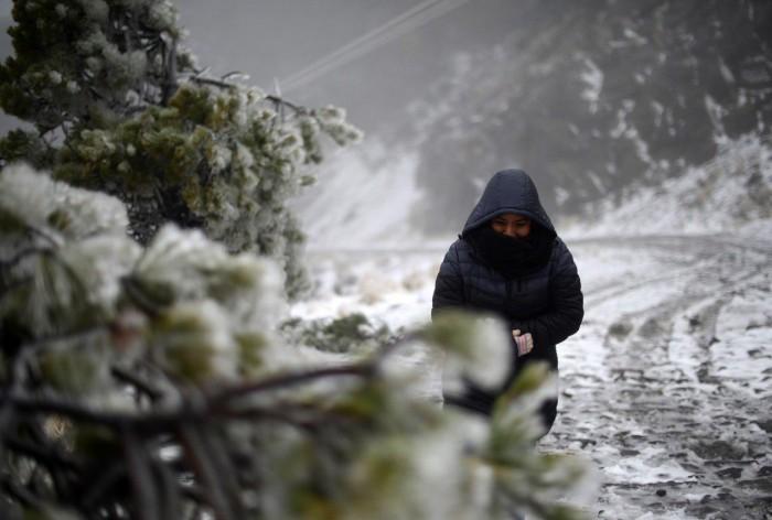 Así se vive la primera nevada del año en el Cofre de Perote