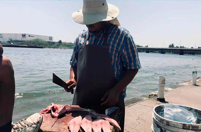 En Boca del Río pescadores sobreviven a F.F con 50 pesos al día