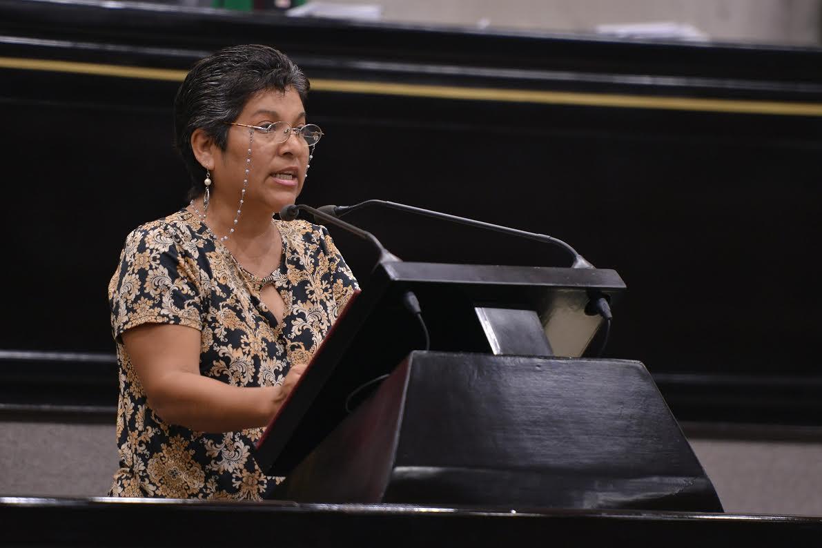 Diputada Rocío Pérez prevé auditoría a municipios que contrataron créditos