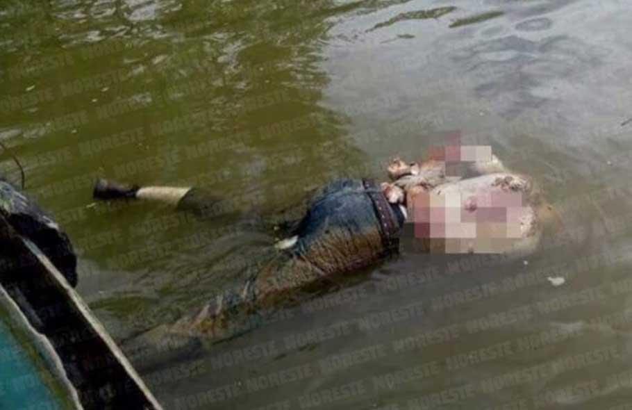 Localizan tres cadáveres a orillas del Río La Antigua