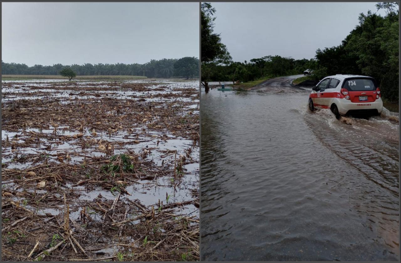 Cultivos perdidos y caminos anegados por lluvias, en el sur