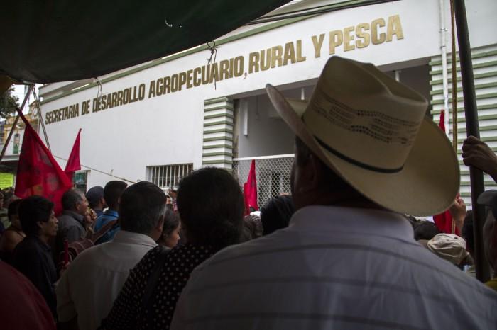 Demandarán penalmente a Sedarpa por desvío de recursos