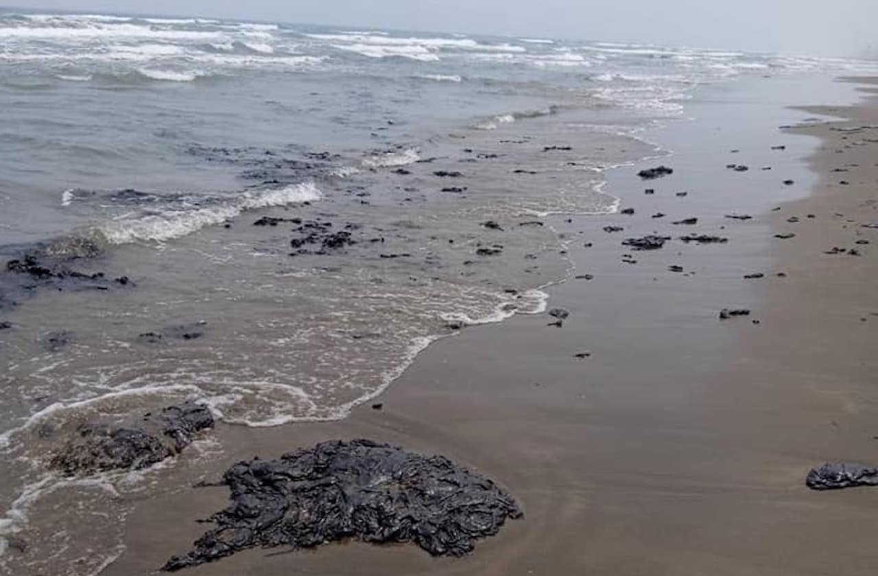 Denuncian derrame de hidrocarburo en Tecolutla; afecta a tortugas