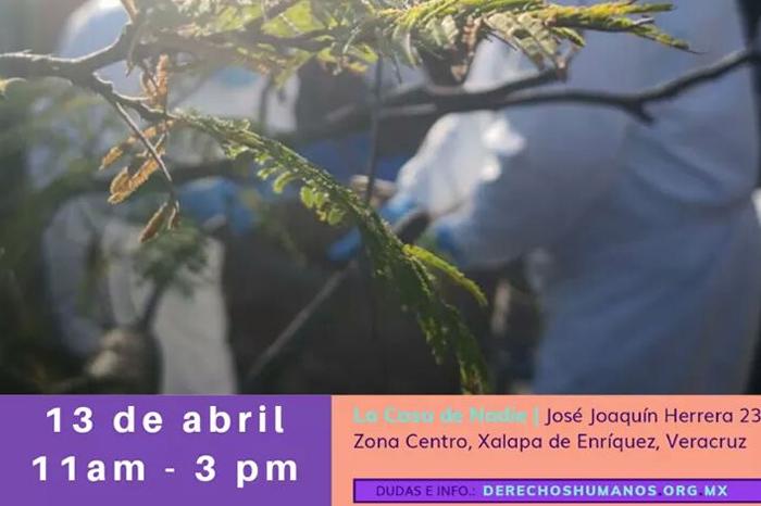 Escuela de Derechos Humanos convoca a foro sobre desapariciones en Veracruz