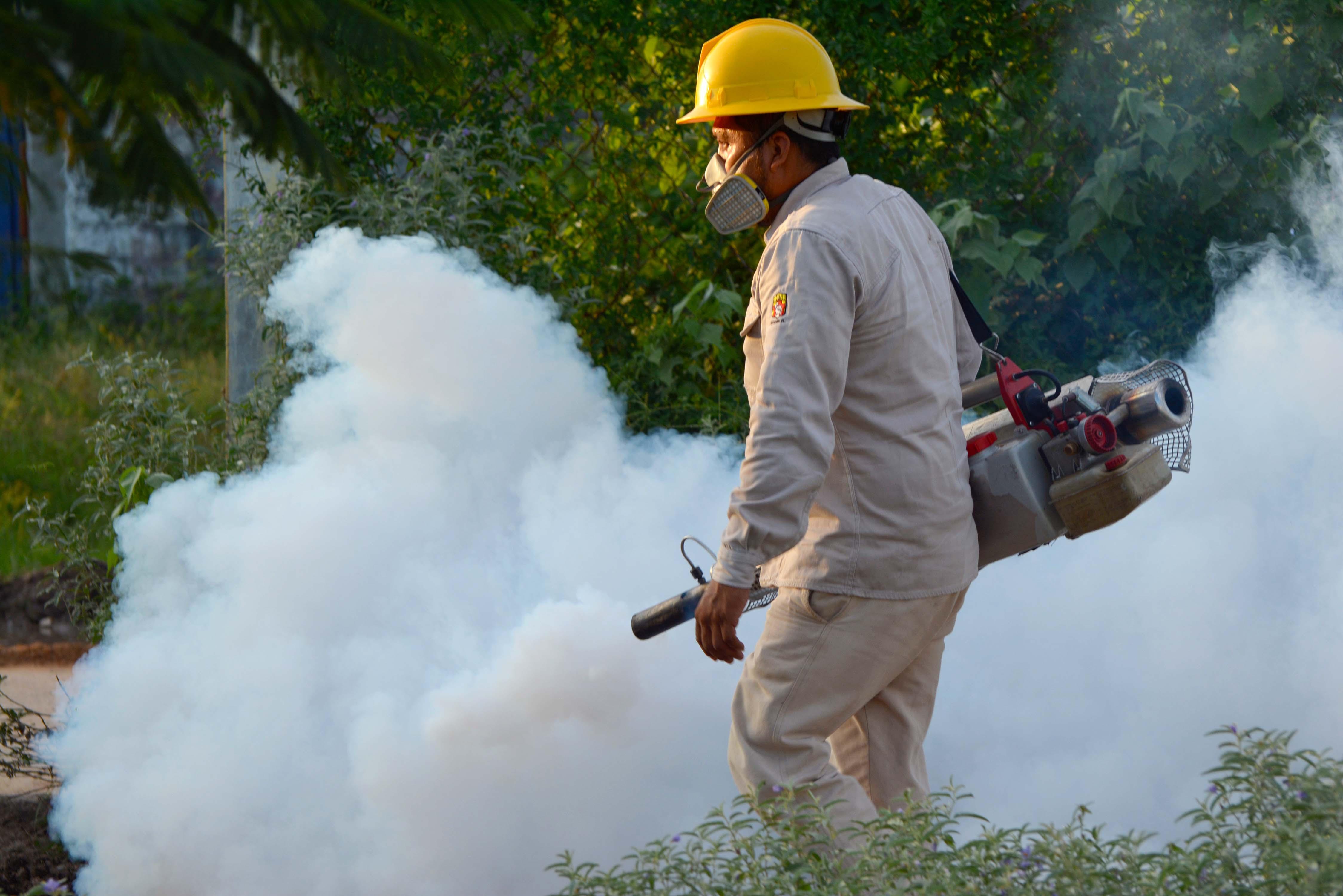 Personal de vectores es enviado a regiones sin dengue