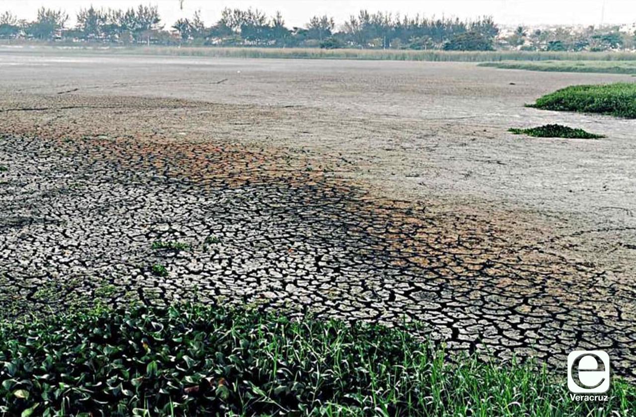 Estiaje revela drenaje clandestino que era arrojado a Laguna Lagartos