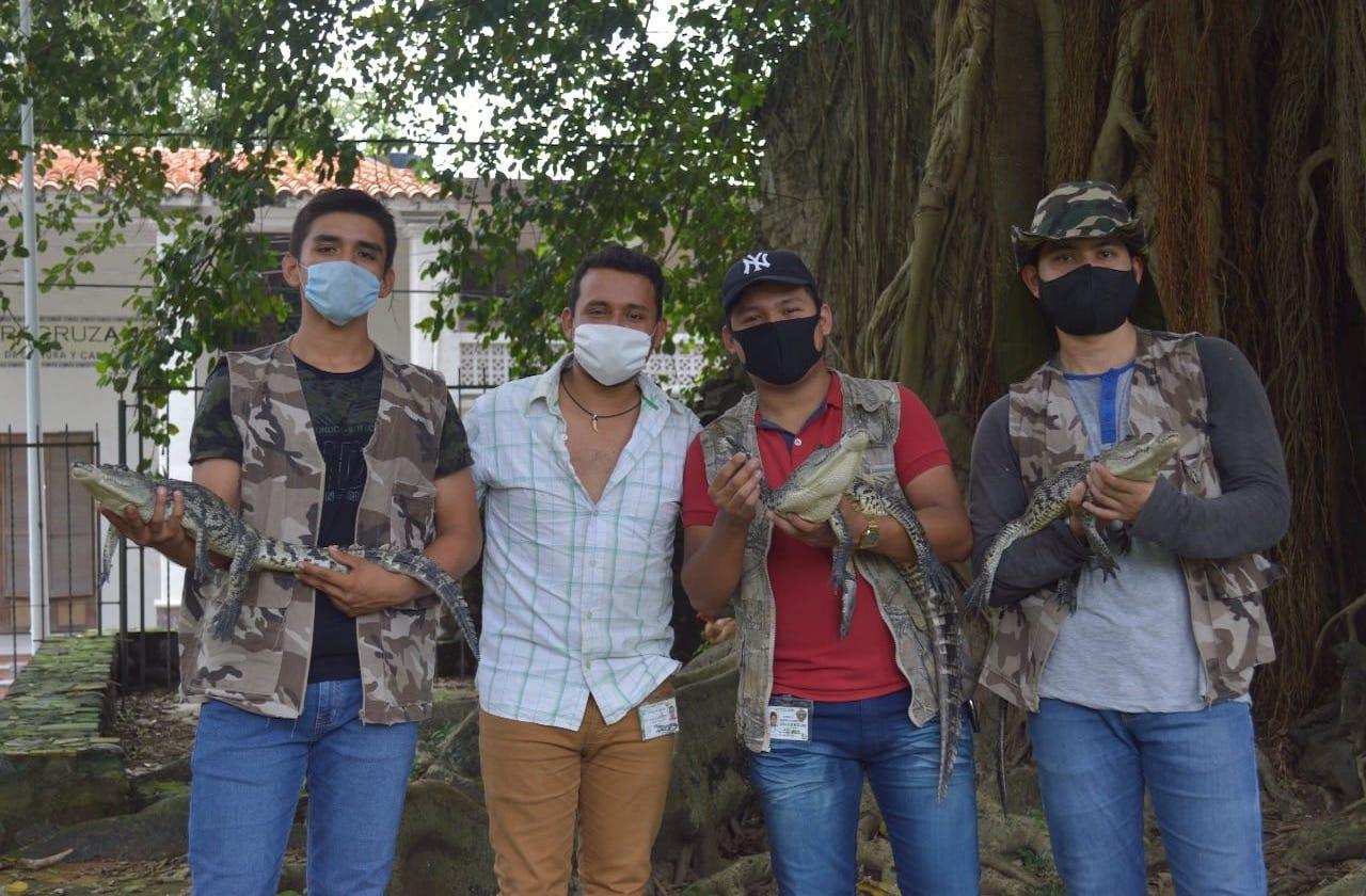 Estudiantes crean santuario para preservar cocodrilos, en La Antigua