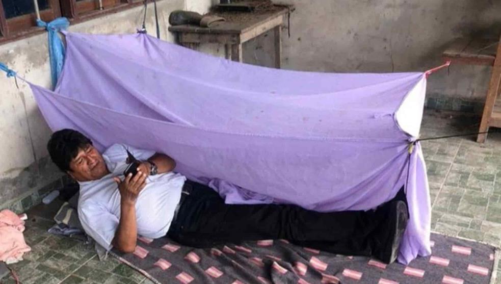 Con avión, gobierno de AMLO recogerá a Evo Morales para darle asilo político en México