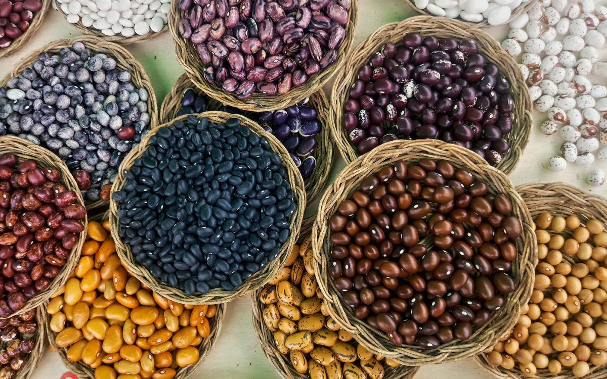 Los costos con AMLO, ¿cuánto costarán el maíz, frijol y leche?