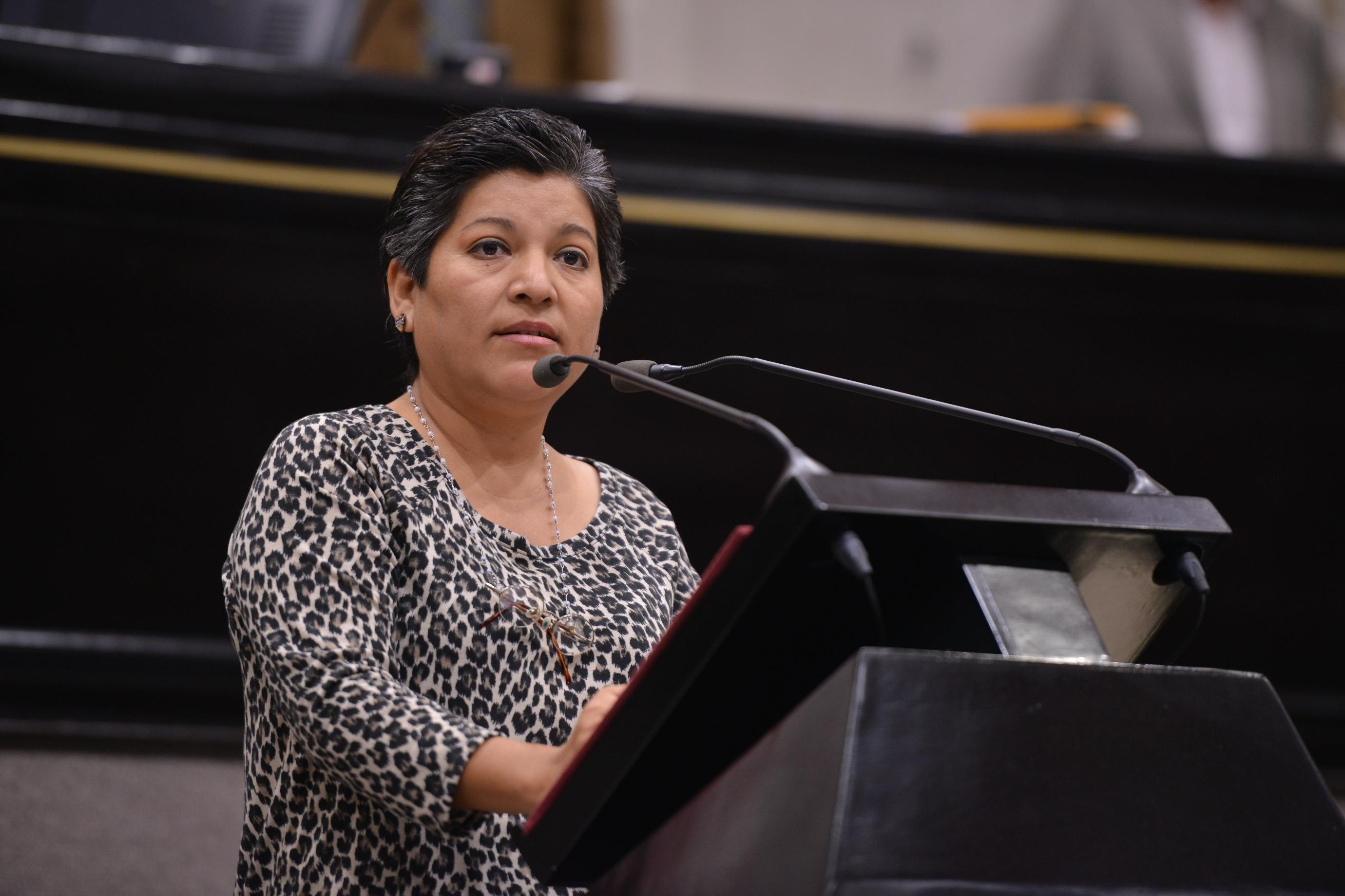 Invita la diputada Rocío Pérez a Jornada de Reforestación, en Perote
