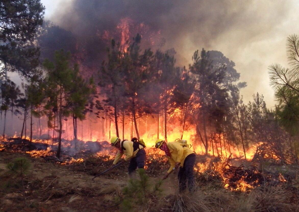 Veracruz suma 112 incendios en lo que va del 2015