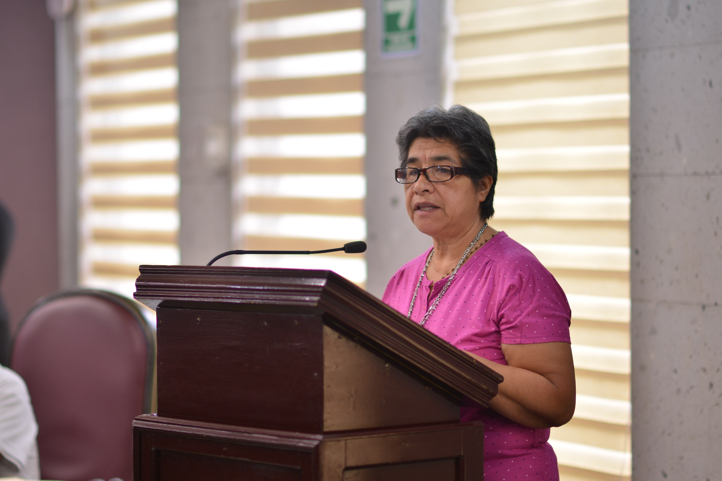 Presentan diputados del PRI iniciativa que regularía construcciones en la Entidad