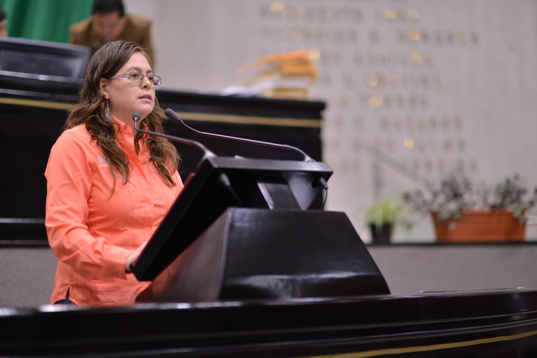 Propone Tanya Carola reformas de austeridad y ahorro en el Congreso