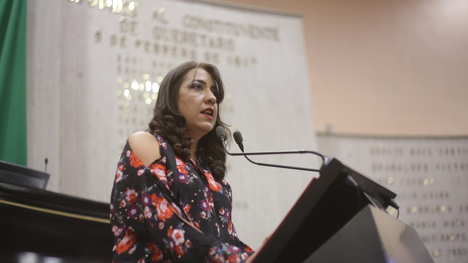 Leyes veracruzanas deben prohibir la violencia política: Teresita Zuccolotto