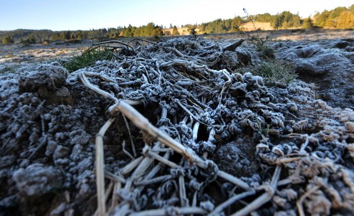Sequía severa afectará al campo veracruzano en 2016
