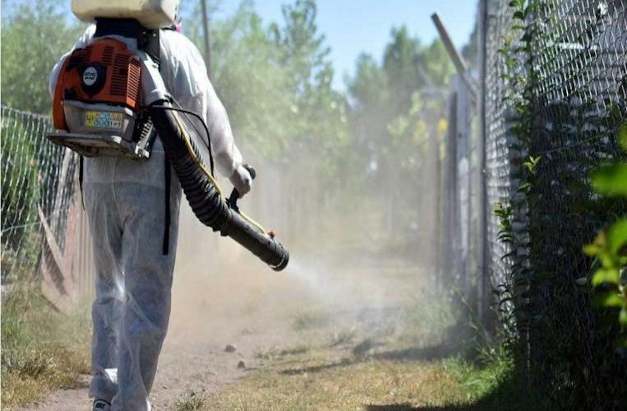 SSA suspende acciones contra el dengue