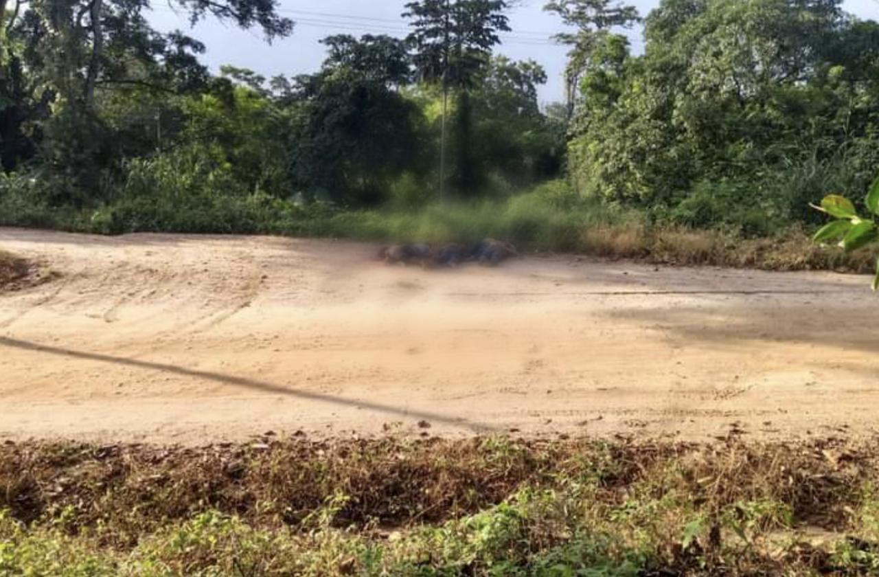 Hallan cadáveres en zona limítrofe entre Veracruz y Oaxaca