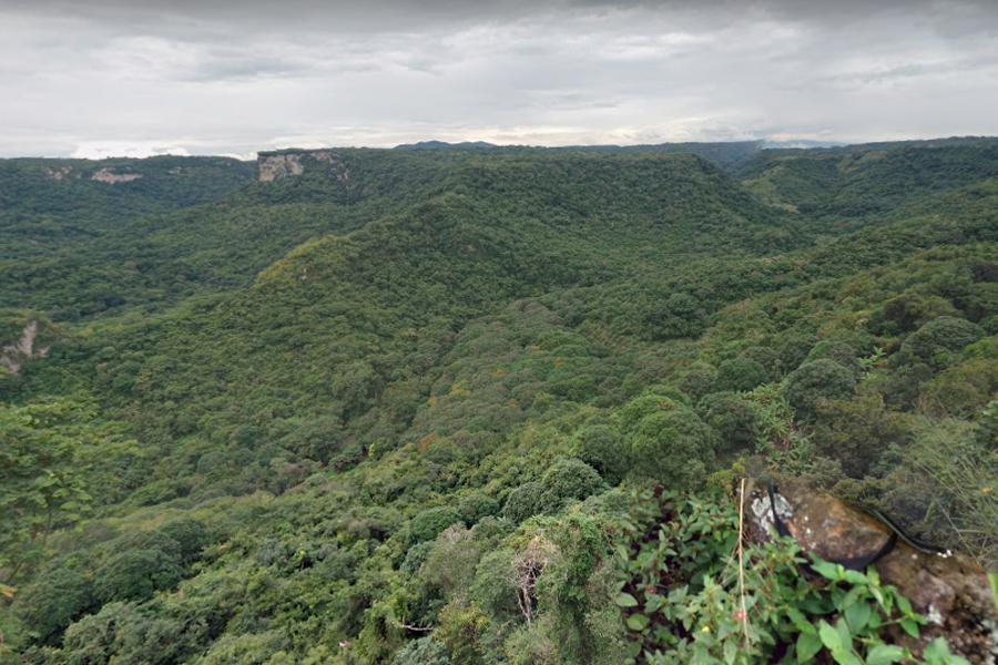 Cinco cadáveres fueron sacados de barranca, en Cerro Gordo