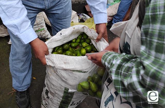 Productores de Tatatila agotaron la venta de higo en 3 horas