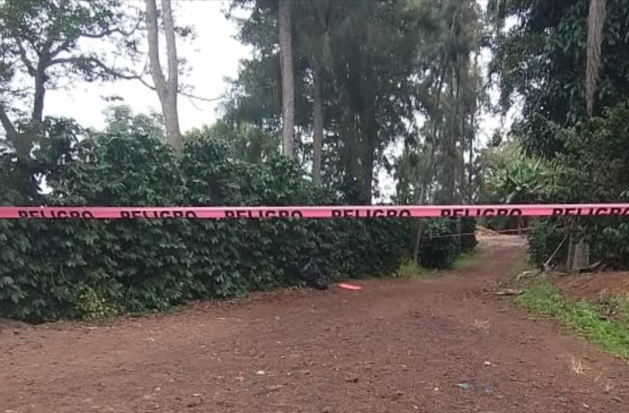 Hombre desmembrado es abandonado en cafetales de Comapa