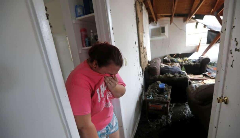 FOTOS: Así luce la devastación del ciclón Michael