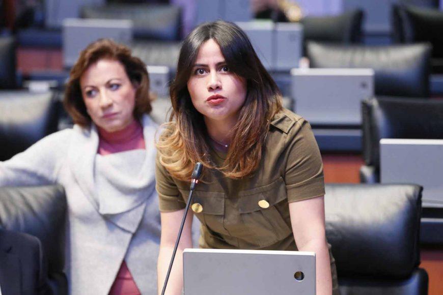 Fiscalía Anticorrupción intentó desestimar denuncias contra Indira Rosales