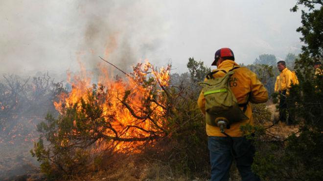 Incendios forestales afectan más de 2 mil hectáreas