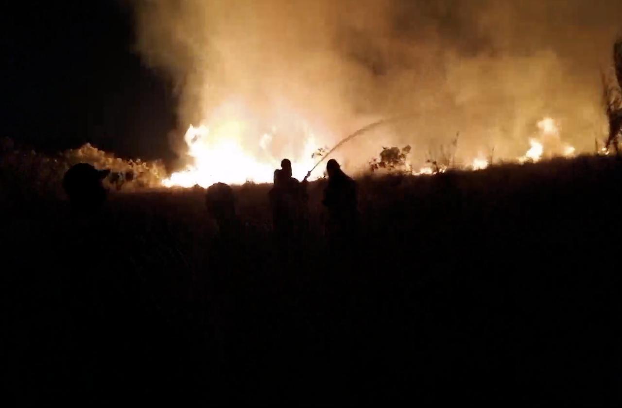 Incendio en Fortín fue provocado; 15 hectáreas perdidas