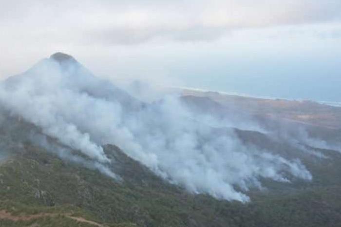 Son dos, los incendios activos en Veracruz: Conafor