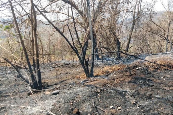 Reportan incendio de pastizal en inmediaciones de Laguna Verde