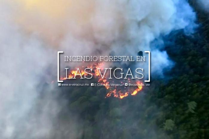 ¿Qué sabemos del incendio forestal en Las Vigas, Veracruz?