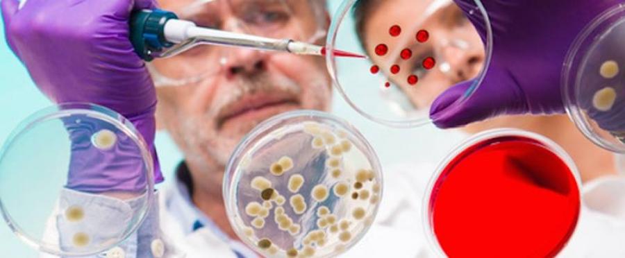 Los 9 datos sobre investigación clínica en México