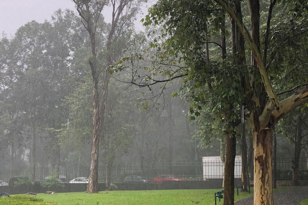 Se mantiene Alerta Gris en Veracruz, lluvias seguirán hasta el jueves