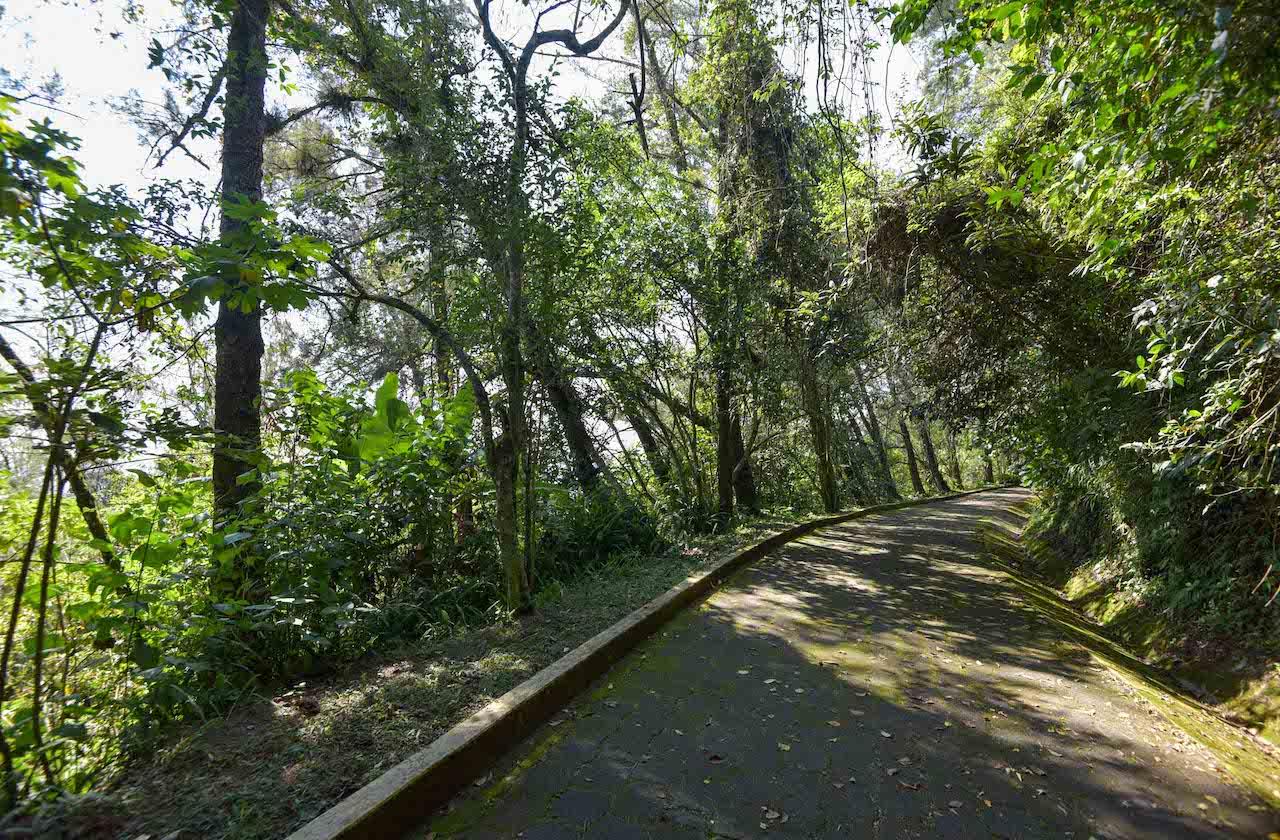Lo que debes saber sobre la reapertura de parques en Xalapa