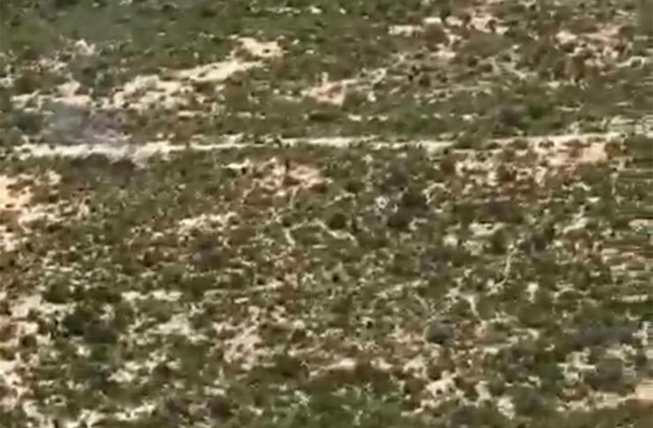 Localizan a dos veracruzanos en desierto de Coahuila