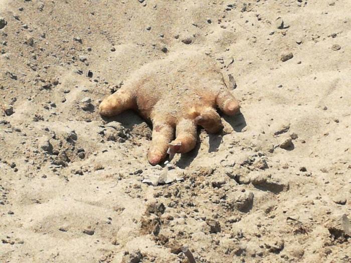 Identifican cadáveres encontrados en fosa en Coatzacoalcos