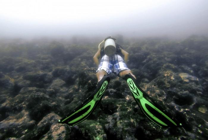 Buzos descartan daños al ecosistema marino por incendio