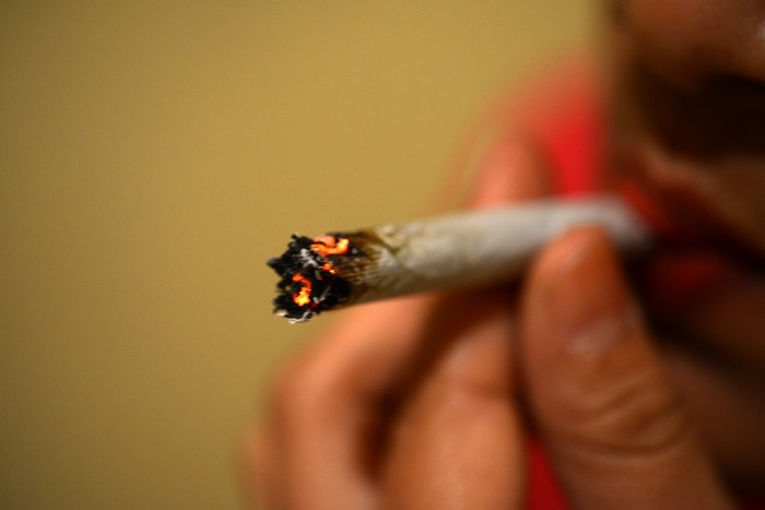 Daña mariguana estructuras neuronales y capacidades motoras, sobre todo en menores